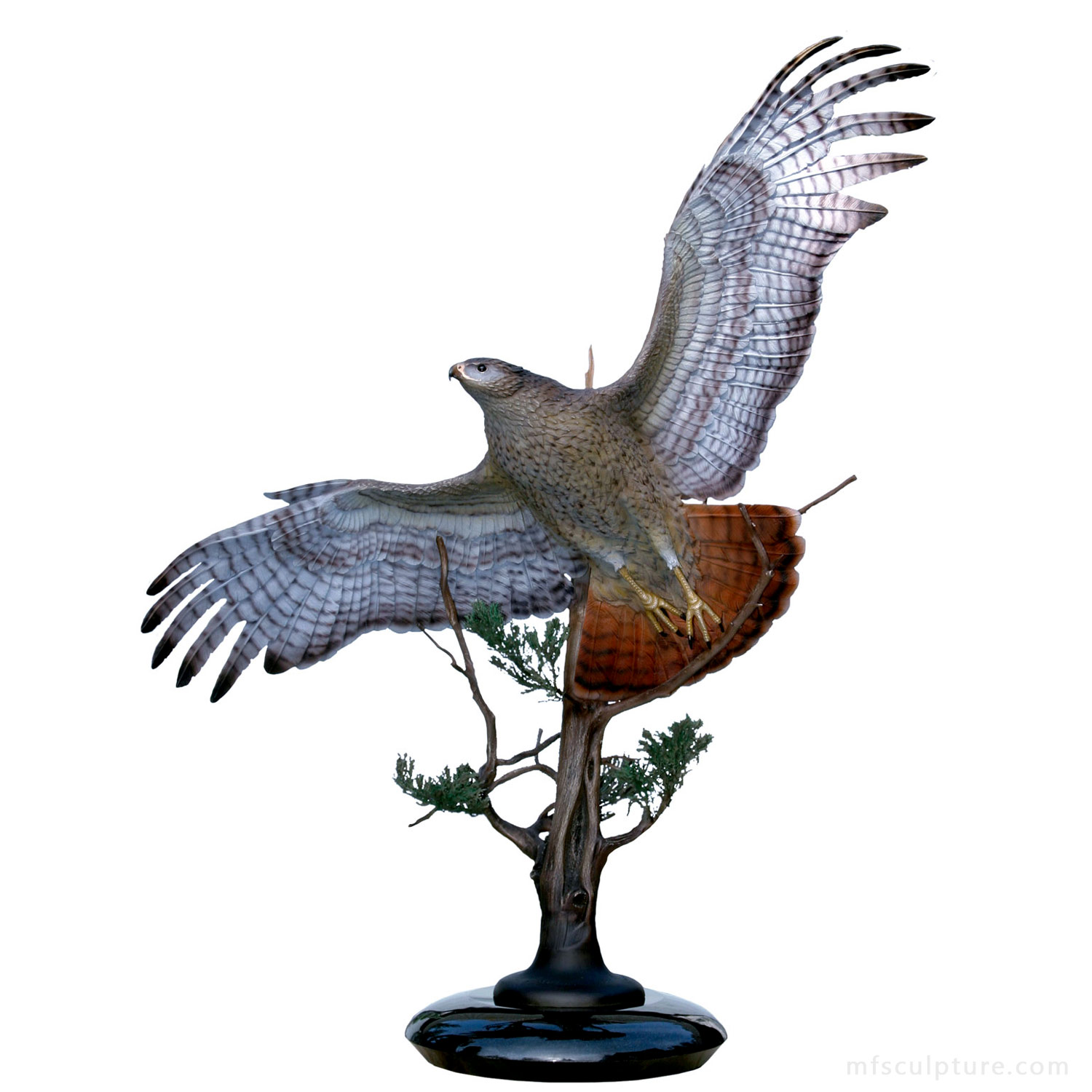 Sovereign Skies Bronze Red Tailed Hawk Statue Sculpture
