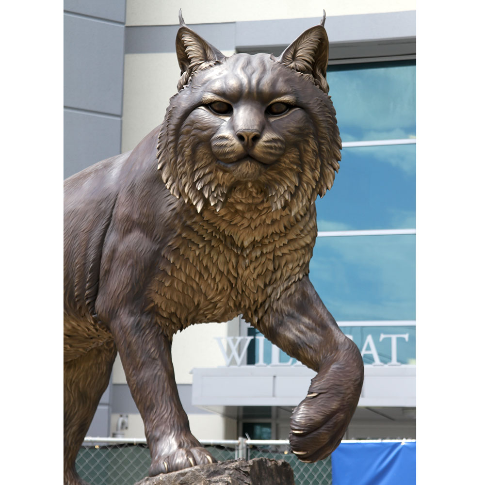 University Mascot Monument Wildcat Sculpture JWU College Professional team 8