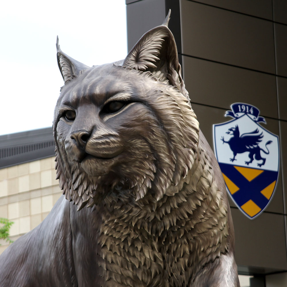 University Mascot Monument Wildcat Sculpture JWU College Professional team 9