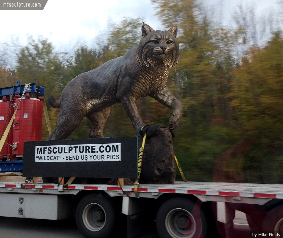 Wildcat Sculpture University Mascot Monument Trucking 2
