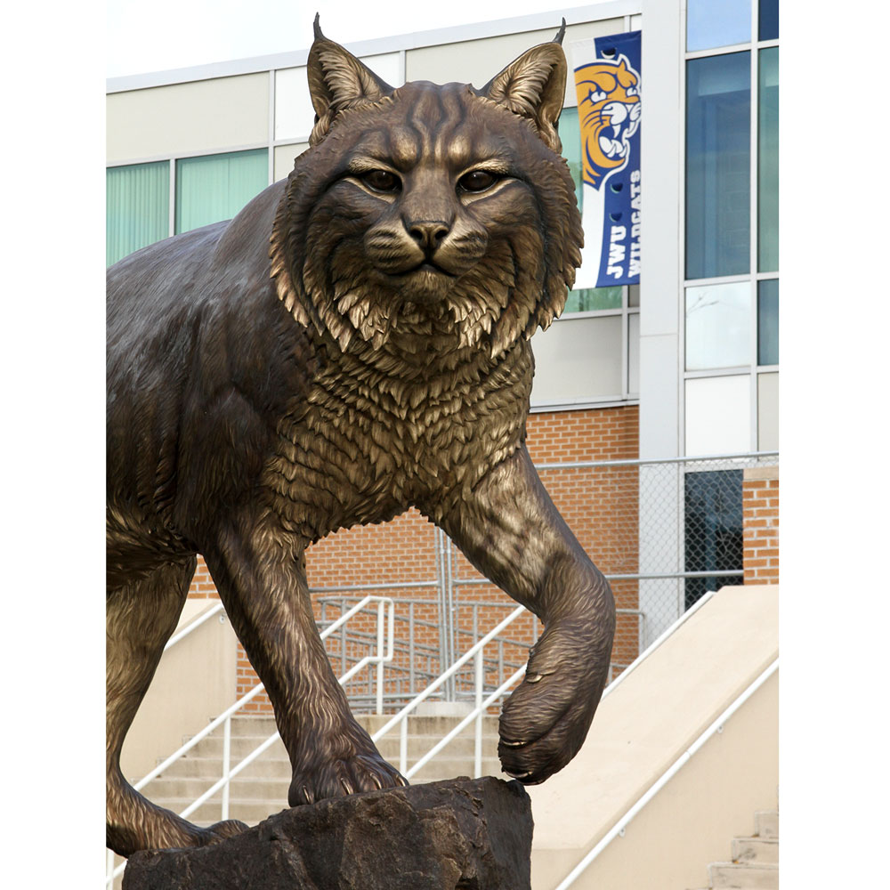 Wildcat University Mascot Monument Sculpture JWU College Professional team 5