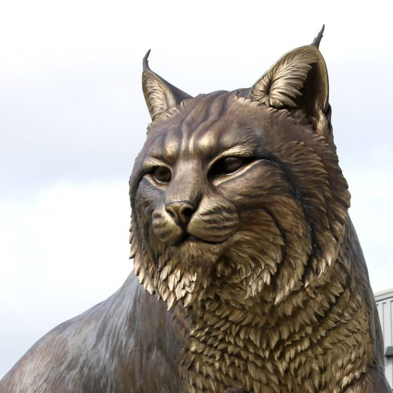 Wildcat University Mascot Monument Sculpture JWU College Professional team 9