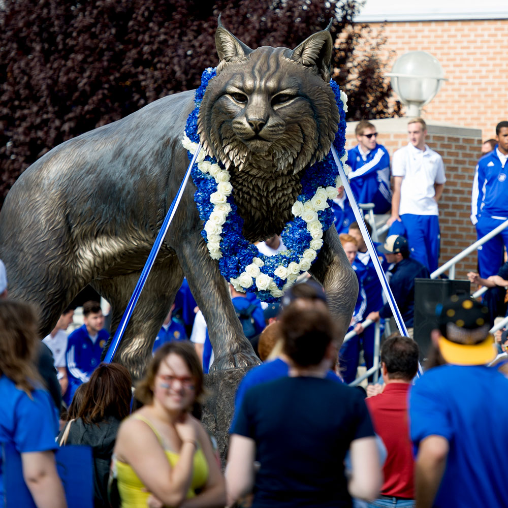 Wildcat University Mascot Monument Sculpture JWU College famous team 19