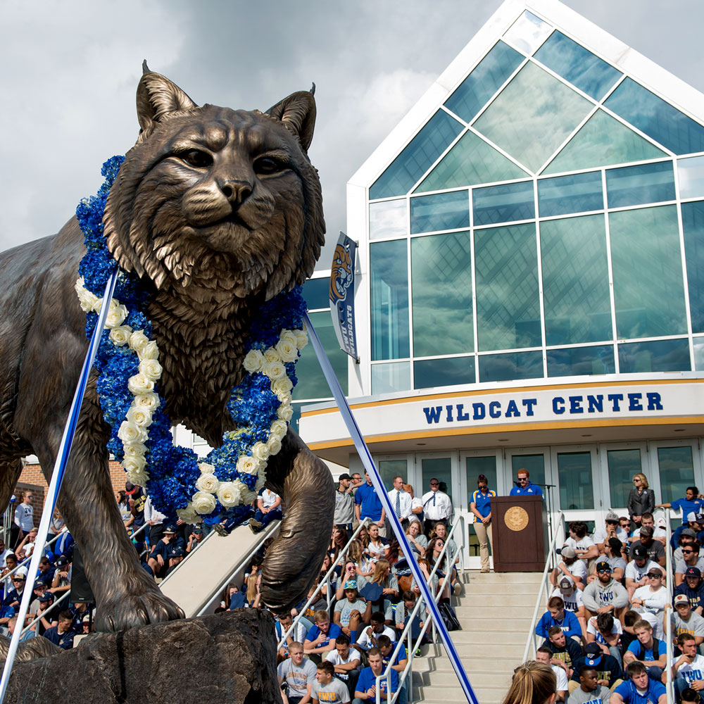 Wildcat University Mascot Monument Sculpture JWU College famous team 20