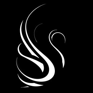 Swan Mikel Fields Negative Absense silhouette
